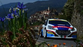 Paolo Andreucci, Anna Andreussi (Peugeot 208 T16 R3 #3)